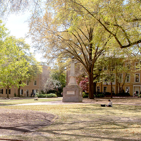 Spring scenery on the Horseshoe